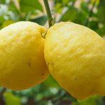 Come usare il limone per pulire ……