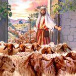 CAPITOLO 80   del 19-25 Agosto Il Pastore eccellente e gli ovili         GIOVANNI 10:1-21                                           GESÙ PARLA DEL PASTORE ECCELLENTE E DEGLI OVILI